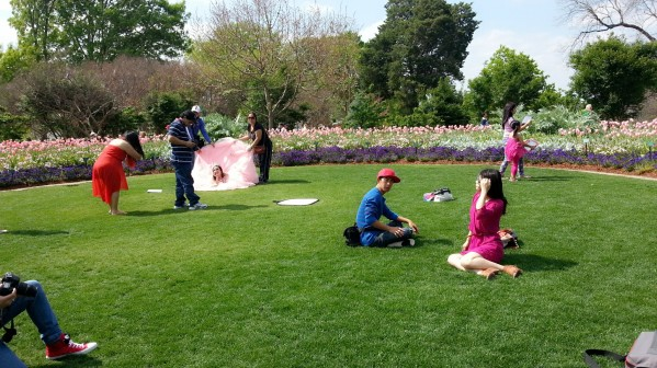 lots of photo shoots were going on all over the gardens.
